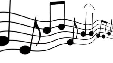 音楽の歌詞を重視しますか?「音楽はメロディか歌詞か、どちらを重視するか?」