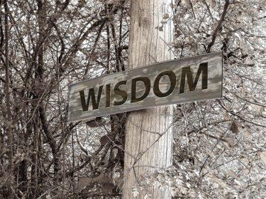 愚者は経験に学び、賢者は歴史に学ぶ「人間は過ちを何度も繰り返す。だから他人の失敗集である歴史から学ぶ価値がある。」