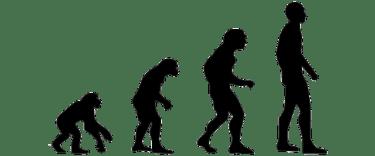 進化論否定「進化が全て良いわけではない」