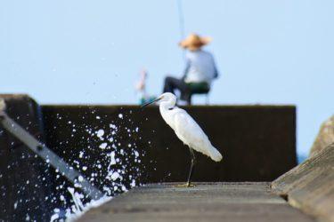 人任せな人の特徴。「魚の釣り方を覚えるより、魚を釣って欲しい人達」「肩こり・首こり・腰痛などに悩んでいる人も必見!」